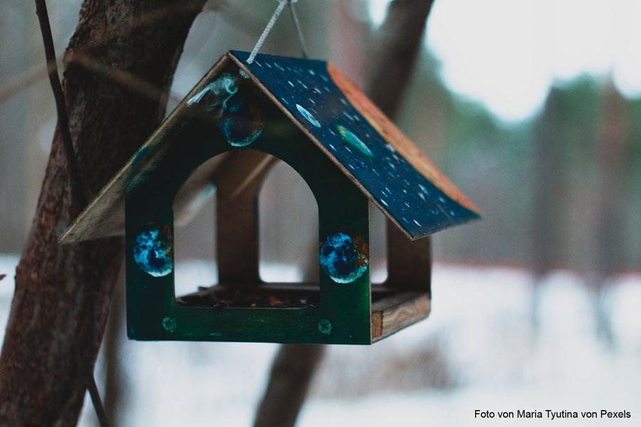 Warum einfach, wenn es auch kompliziert geht – Vogelfutter kaufen